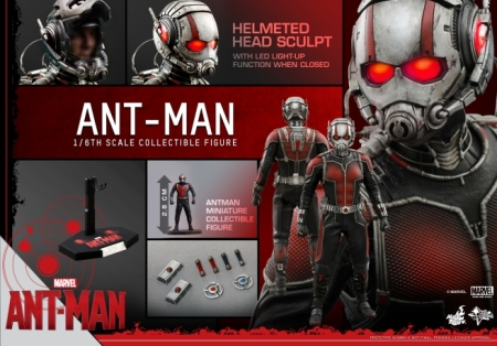 hot-toys---ant-man---ant-man-collectible-figure-pr17-144634