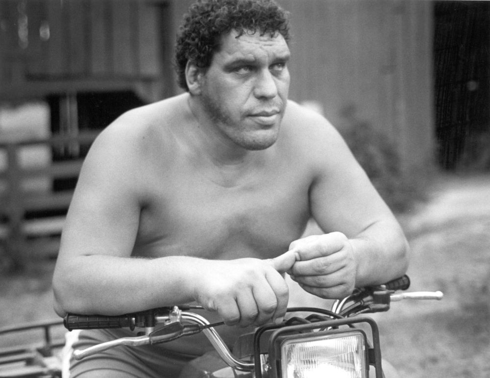 Andre-the-Giant-Net-Worth
